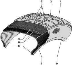 Поперечный разрез радиальной шины